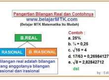 Pengertian Bilangan Real dan Contohnya