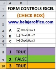 Check Box Excel