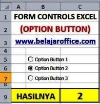 Option button excel
