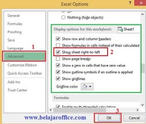 Excel options Direction
