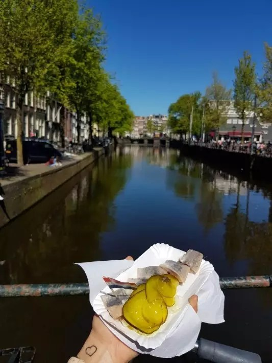 amsterdam must eat food herring fish