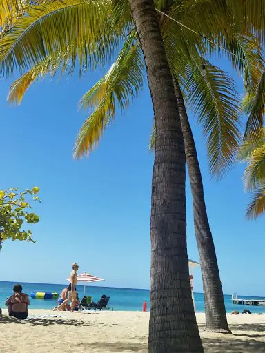 must-do-and-eat-in-montego-bay-mobay