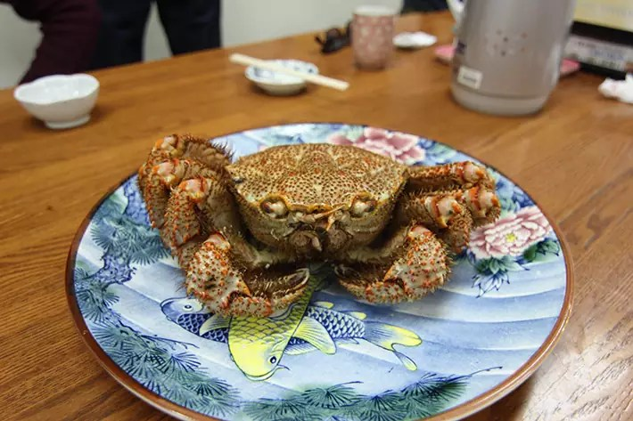 otaru canal Sankaku Fish Market hairy crab, best time to visit hokkaido, south hokkaido itinerary, what to do in hokkaido