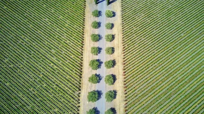 Napa Valley, California; Best drones for travel