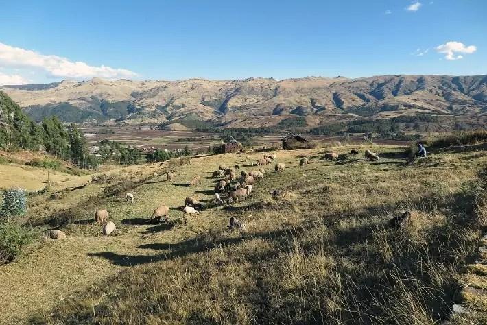 hiking-cusco-peru