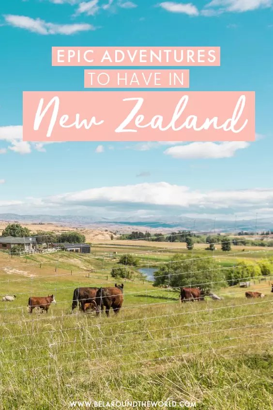 Looking for the best experiences not to miss in New Zealand? These are my epic adventures from travelling 6 months in New Zealand! Adrenaline guaranteed! #NewZealand #Adventure