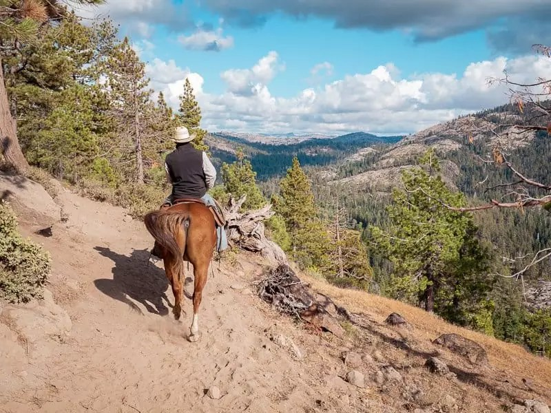 horse-riding-aspen-pack-station-things-to-do-around-Yosemite-National-Park-Tuolumne-California