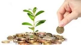 groene belegging