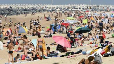 صورة قواعد للاستمتاع بالشاطئ في بلانكنبرج هذا الصيف