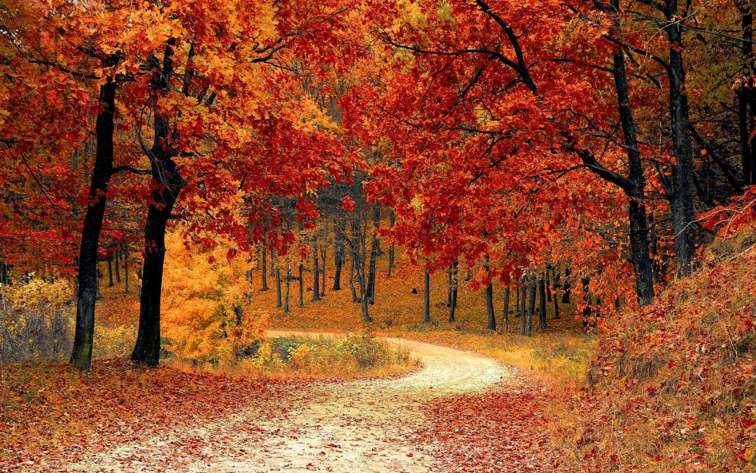 3 Tips To Manage Seasonal Changes