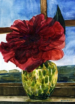 camellia1stdayofspring7x572