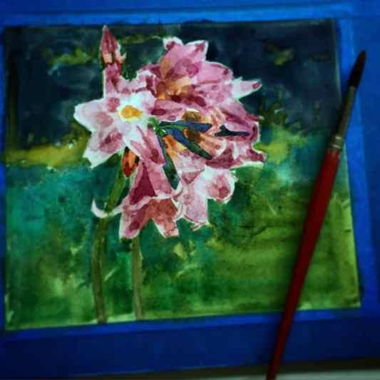 painting-flowers-in-watercolor