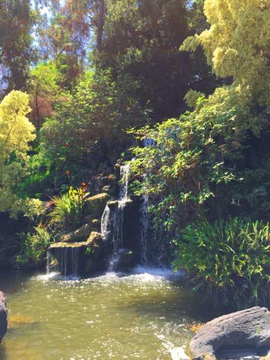 arboretumwaterfall