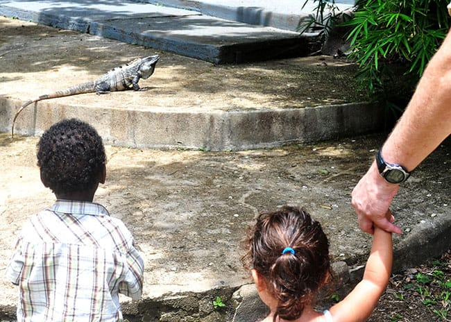 Belize with kids and grandparents
