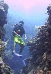 diving esmeralda canyons in belize