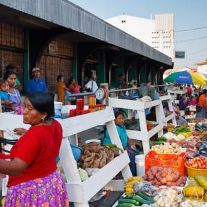 Punta Gorda market