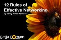 Sandy Jones-Kaminski presents 12 Rules of Effective Networking