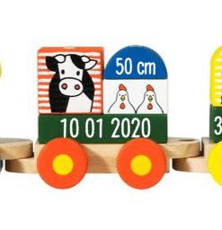 Nijntje trein - Gepersonaliseerd met naam - Gepersonaliseerd met geboorte gegevens - kraam cadeau - geboorte cadeau - gepersonaliseerd cadeau