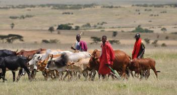 Image result for Dry season: FG partners Nasarawa govt. to forestall herdsmen/farmers crises