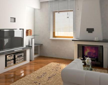 Living Room Organizing  Bella Organizing  San Francisco Bay Area