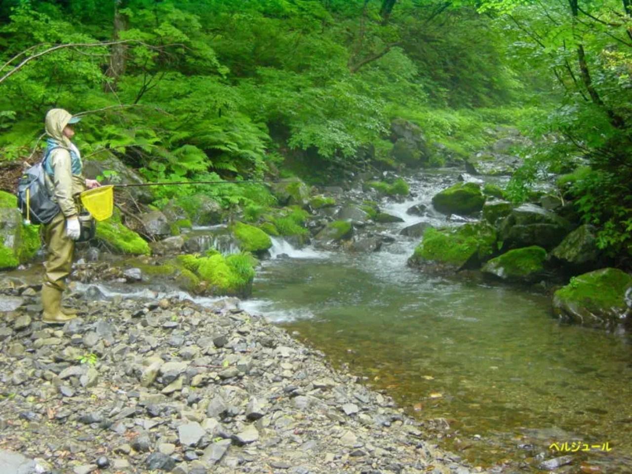 tokuyama00016 - 揖斐川上流・旧徳山村での岩魚釣り
