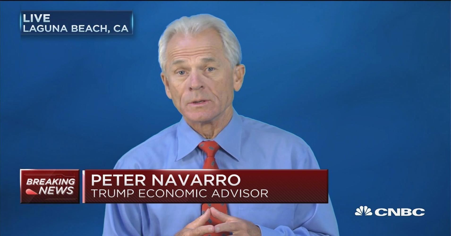Image result for peter navarro and the new Trade Council