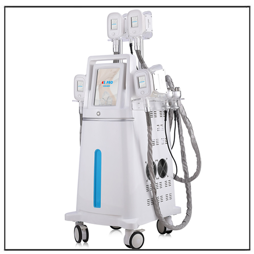 Fat Freezing Cryolipolysis RF Cavitation Slimming Machine