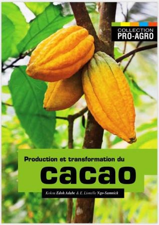 Agriculture: Comment cultiver le cacaoyer ?