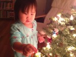 P and the Tree
