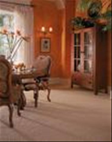 home depot carpet vs empire carpet