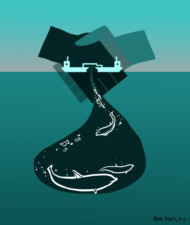 High-risk oil transfer operation to be carried out against wishes of local dolphins.