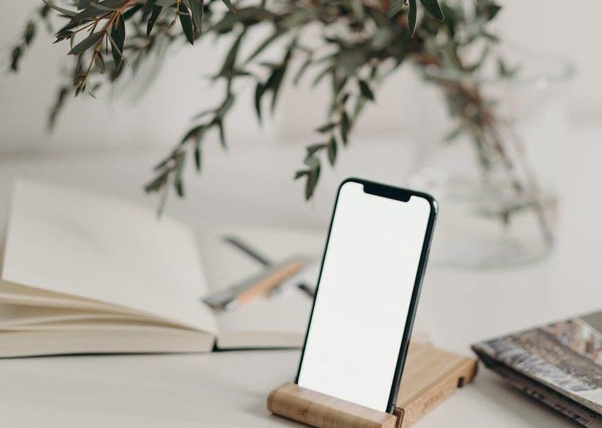 photo of smartphone near decorative plant