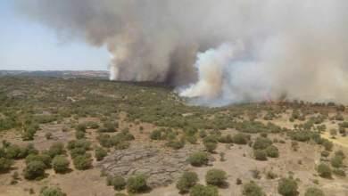 Photo of UGT solicita que se amplie el tiempo de trabajo del operativo de incendios