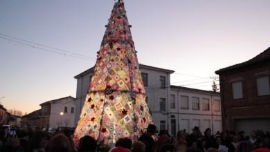 Photo of Villoria de Órbigo ya luce su árbol de ganchillo más grande del mundo