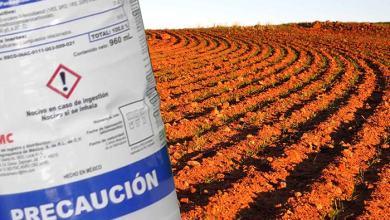 Photo of Aprobada la actualización de la normativa sobre productos fertilizantes