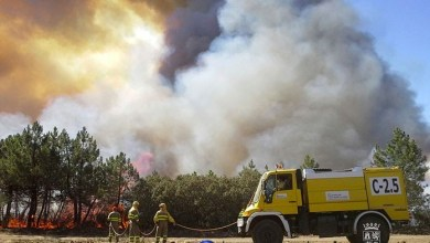 Photo of La Junta creará 74 plazas nuevas en extinción de incendios
