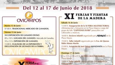 Photo of Ferias y Fiestas de la Madera 2018 en Villalpando