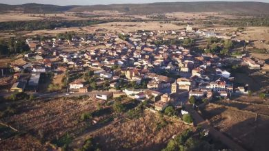 Photo of Una planta de combustión de biomasa planea asentarse en la zona de Tábara creando 120 empleos