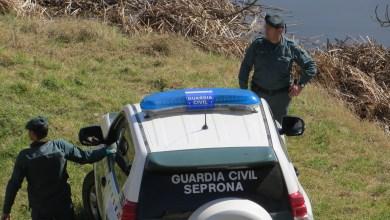 Photo of Investigado por eliminar parte del cauce del río Órbigo para plantar chopos
