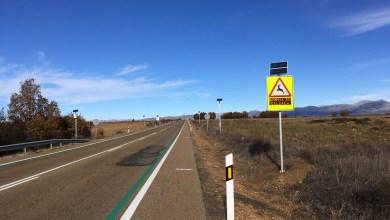 Photo of Un innovador sistema logra reducir los accidentes con animales en las carreteras de Castilla y León