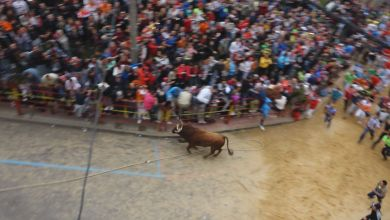 Photo of El programa «Toro en la Piel» grabará un reportaje de las fiestas por un acuerdo con la ABTE