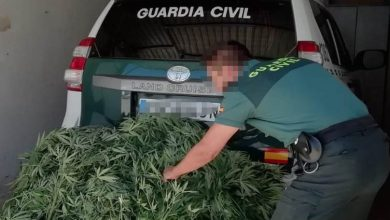 Photo of Investigado un vecino de Tábara al que incautaron 22 kilos de marihuana