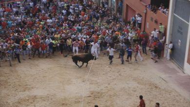 Photo of Canceladas las fiestas del Toro Enmaromado 2020