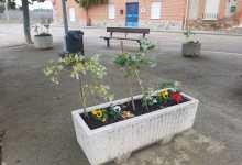 Photo of Villanueva de Azoague luce nuevo jardín alrededor del consistorio municipal
