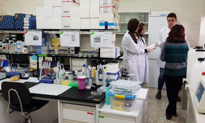 Photo of Los investigadores del IES Los Sauces comienzan sus proyectos de investigación e innovación educativa