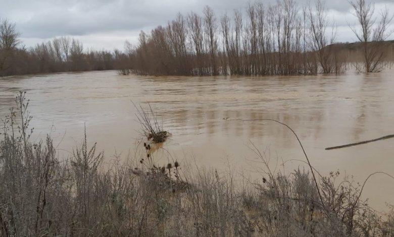 Photo of Desbordado el río Esla a su paso por Benavente provocando cortes en caminos
