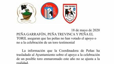 """Photo of Las peñas Garrafón, Trevinca y El Toril aseguran que """"las peñas no han votado el apoyo o no a la celebración de un toro testimonial"""""""