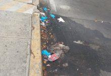 Photo of Ciudadanos Zamora solicita una campaña para la correcta gestión de mascarillas y guantes como residuos