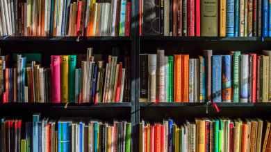 Photo of Educación registra 36.000 usuarios en la biblioteca escolar digital LeoCyL desde su implantación hace cuatro meses