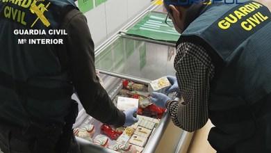 Photo of 59 personas detenidas e investigadas por fraude alimentario
